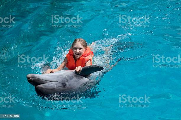 Girl wearing lifejacket with dolphin in clear water picture id171152450?b=1&k=6&m=171152450&s=612x612&h=i6q mwt toumgmyer6xbjav0v7wnizx9fxt738cfdla=