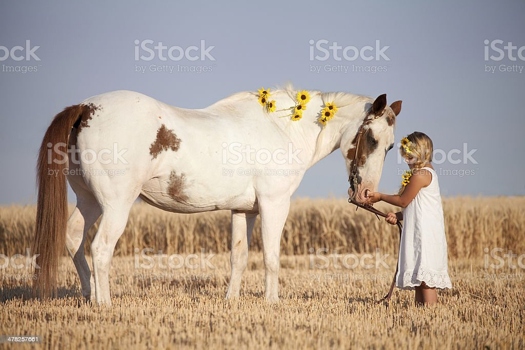 Girl Wearing Summer Dress and Sunflowers Petting Horse stock photo