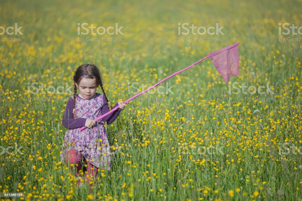 Girl  with a butterfly net stock photo