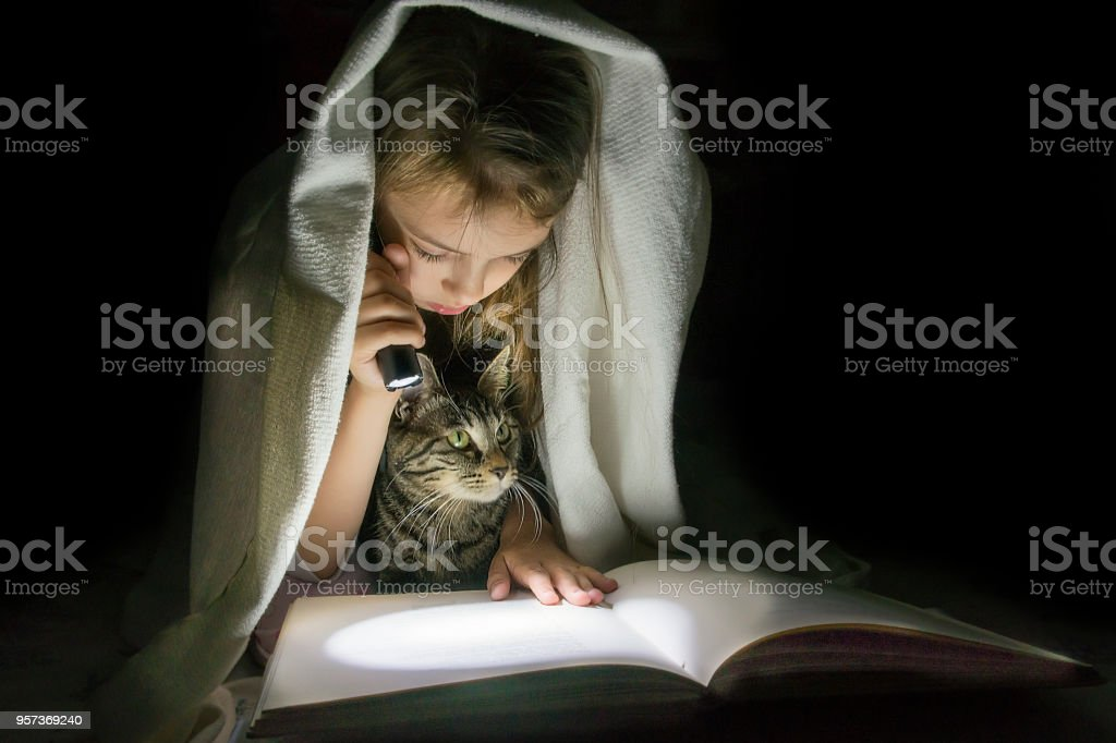 Girl with a cat reading a book with a flashlight in the dark under a...