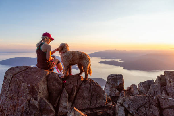 Girl with a Dog hiking on a Mountain