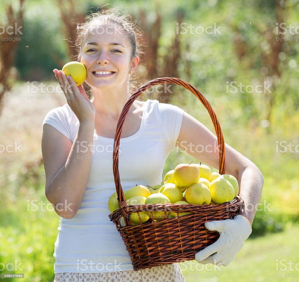 girl with apples harvest in garden royalty-free stock photo