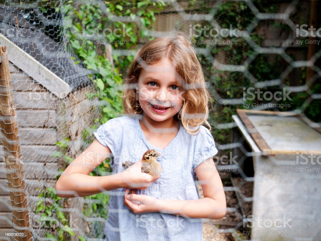 Girl with bantam chick royalty-free stock photo