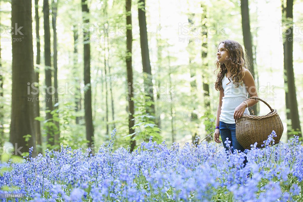 Girl with basket in field of flowers stock photo