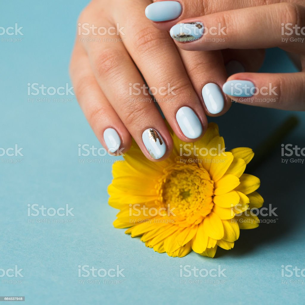 Girl with blue manicure holds a yellow flower royalty-free stock photo