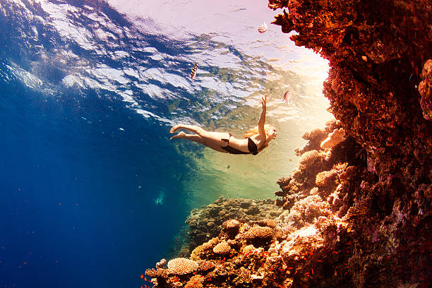 Mädchen mit Korallen im Meer – Foto