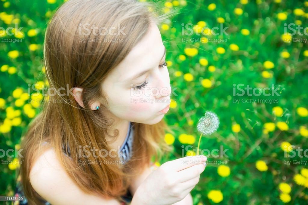 Girl with dandelions royalty-free stock photo