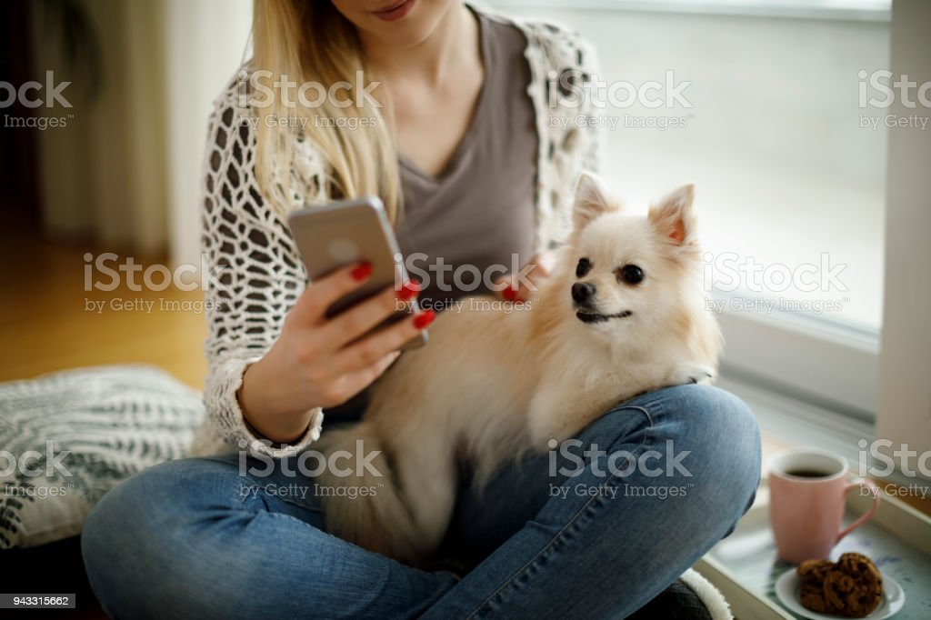 Girl with dog and mobile phone sitting on the floor stock photo
