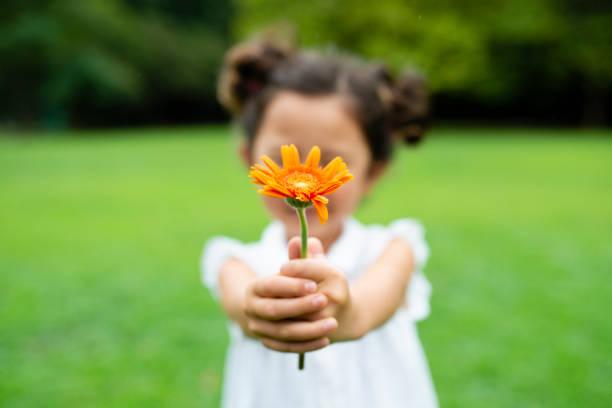 girl with flower - gratidão imagens e fotografias de stock