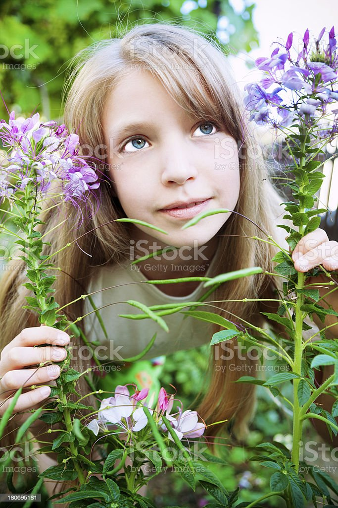 Girl with flowers royalty-free stock photo
