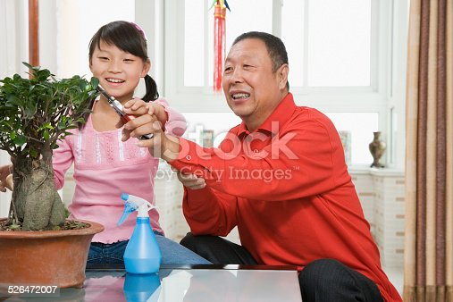 Girl (8-9) with grandfather pruning potted plant, smiling