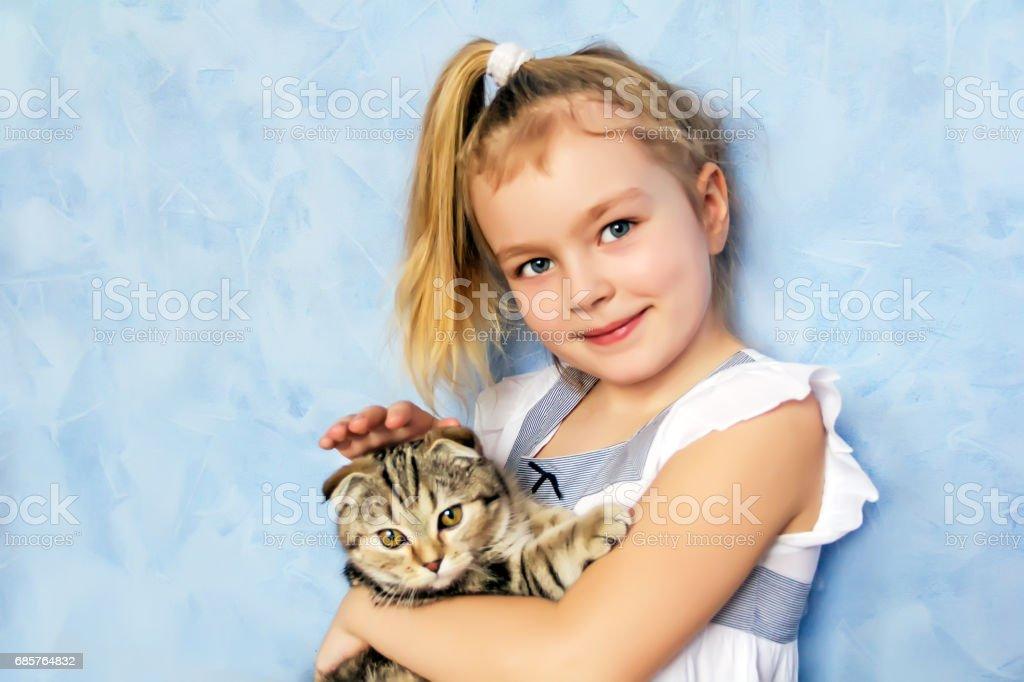 Girl with grey kitty zbiór zdjęć royalty-free