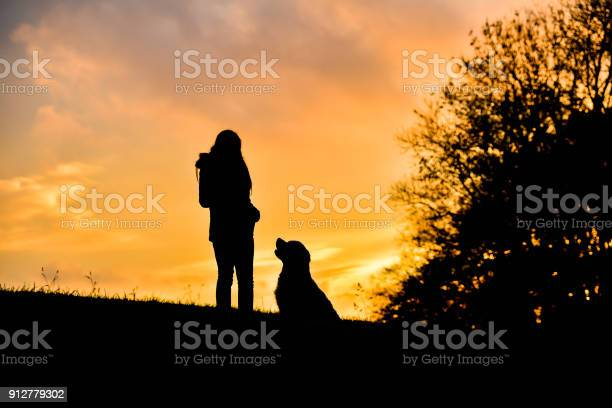 Girl with her golden retriever training and playing at sunset picture id912779302?b=1&k=6&m=912779302&s=612x612&h=njibuv7ovrrqi9wlkmguuyrhf97jhn8tpiwpooet0ao=