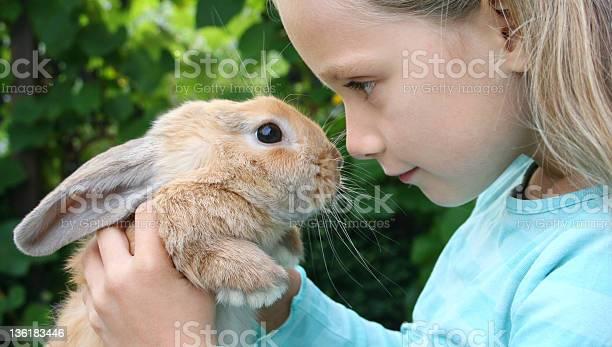 Girl with her rabbit picture id136183446?b=1&k=6&m=136183446&s=612x612&h=gbx3laweyjfkmzuclrfdjsclkh 6tqv v5gbpipylbg=