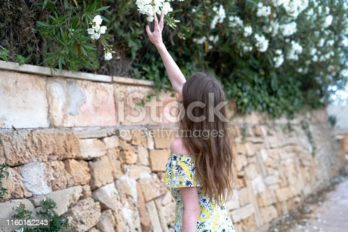 Girl looking flowers with touch them one hand look on back near stonewall