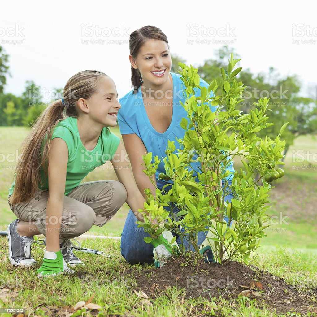 Girl with mom planting tree on Arbor Day; Environmental conservation stock photo