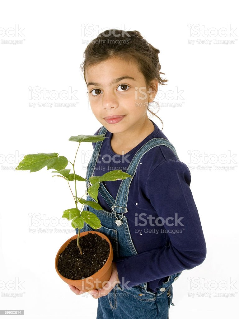 Girl with potted plant royalty-free stock photo