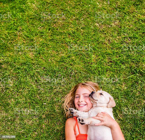 Girl with puppy lying on grass picture id482662389?b=1&k=6&m=482662389&s=612x612&h=5n3auqesjftktk8trj8gfx6pxoc06 g8wzkc6ux6k6k=