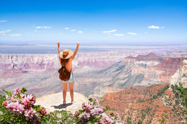 Girl with raised hands relaxing on top of the mountain, looking at beautiful summer  landscape stock photo