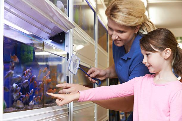 Fille avec des ventes adjoint de Magasin de choisir un poisson rouge de compagnie - Photo