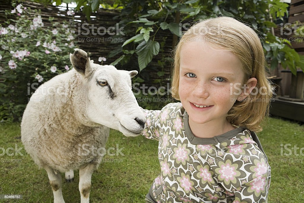 Girl with sheep 免版稅 stock photo