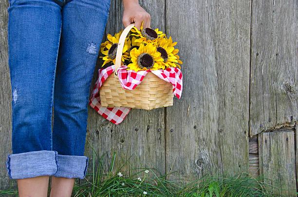 mädchen mit sonnenblumen - denim caprihosen stock-fotos und bilder