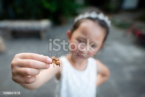 Girl with the empty shells of cicadas