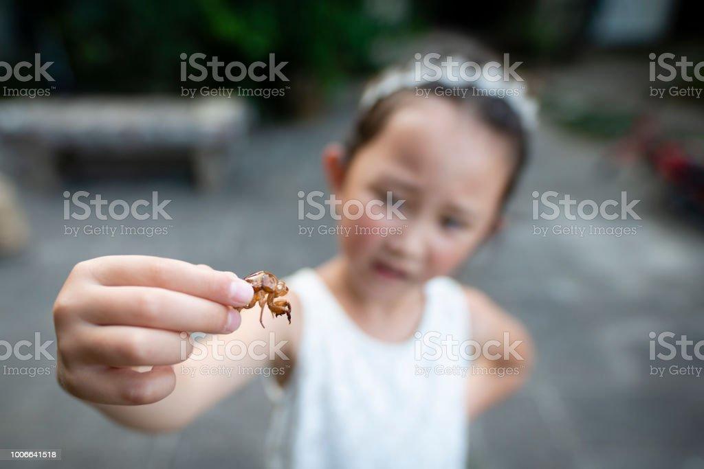 蝉の空のシェルを持つ少女 ストックフォト