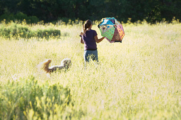 girl with umbrella and dog running through yellow field - kellyjhall stock pictures, royalty-free photos & images