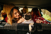 Young smiling girlfriends and their puppy in the car, on a road trip