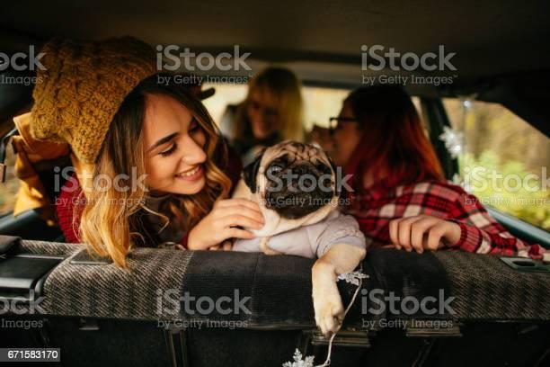 Girlfriends and their puppy on a road trip picture id671583170?b=1&k=6&m=671583170&s=612x612&h=r2taqdhlxssvb awhavgqehu7x7iozc0bwdlkzun6ly=