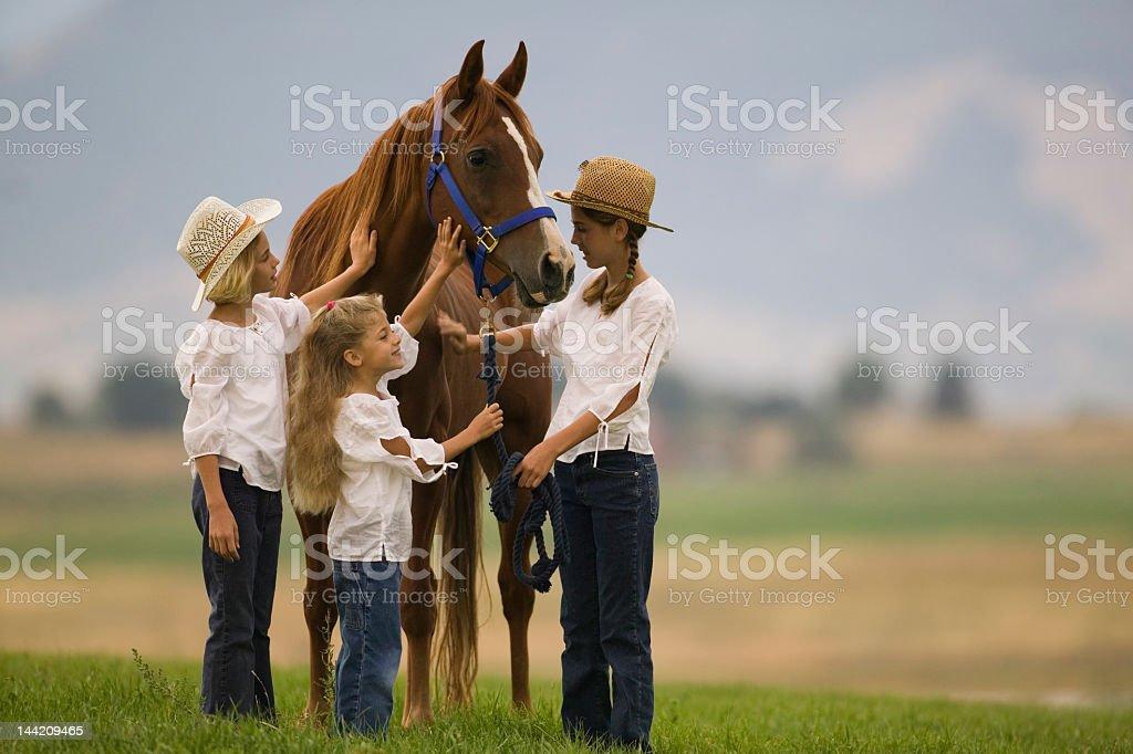 Girls admiring their horse stock photo