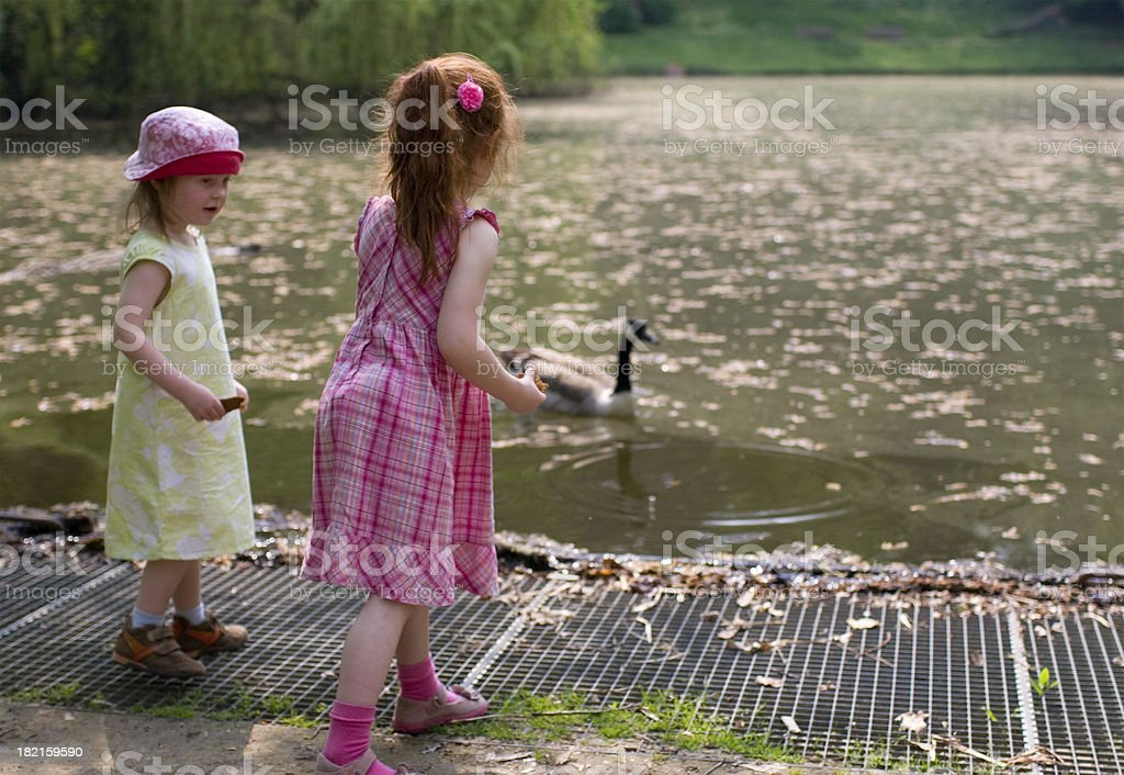 "girls at a pond, feeding goose ""Two girls, aged 3 and 5 years, standing at the side of a pond, feeding a goose.Location: Watermaal-Bosvoorde, Brussels, Belgium."" Activity Stock Photo"