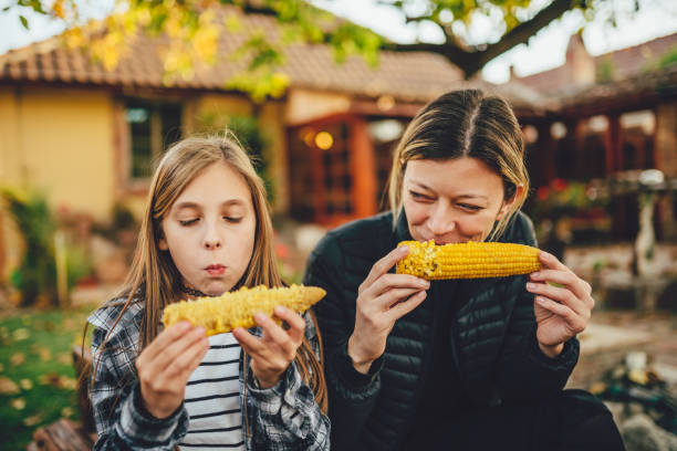 Girls eating sweet corn outdoor stock photo