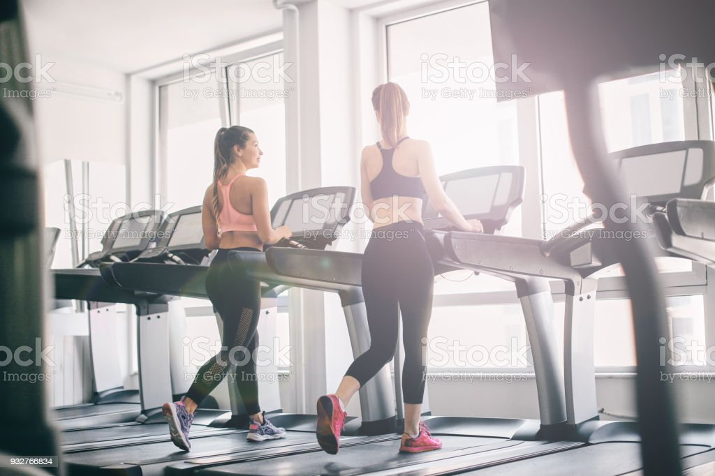 Girls exercising in the gym. stock photo