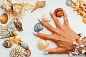 女の子の手を指の間の海の貝と
