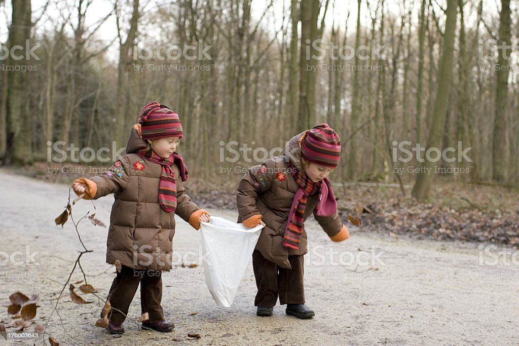 girls in forest searching chestnuts stock photo