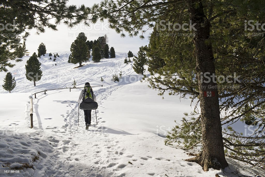 Girls is hiking through pines, in Winter stock photo
