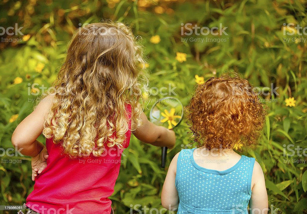 Girls Looking at Wildflower with Magnifying Glass royalty-free stock photo