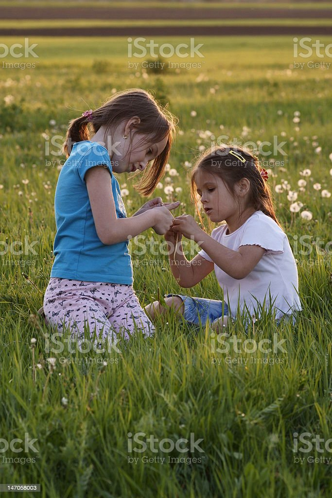 Girls play together on a field among dandelions royalty-free stock photo