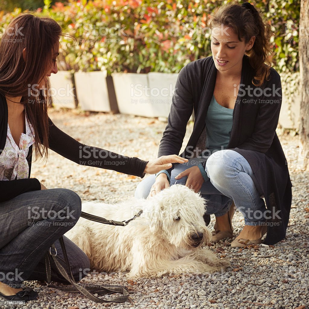 Girls Relaxing with dog in the park royalty-free stock photo
