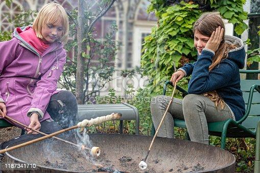 istock Girls roasting marshmallows 1187341710