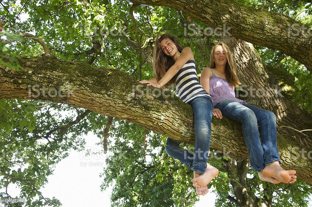 Girls sitting in tree together stock photo