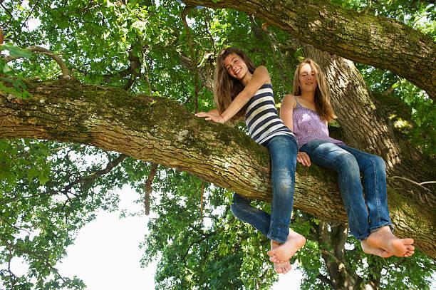 ragazze seduto nell'albero insieme - bambine femmine foto e immagini stock