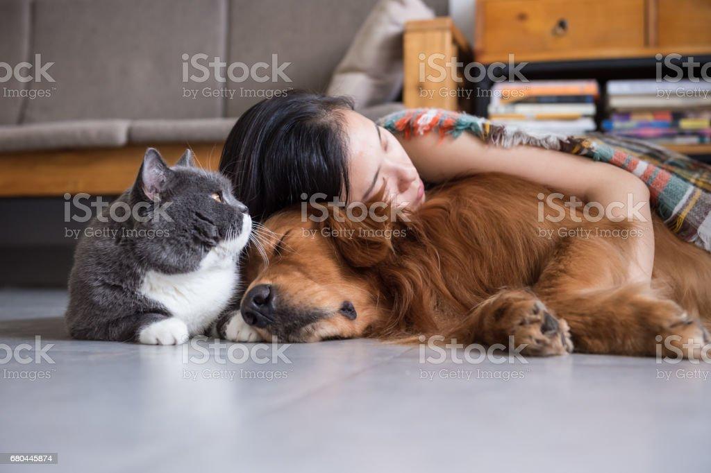 Meninas dormircom com cães e gatos foto royalty-free