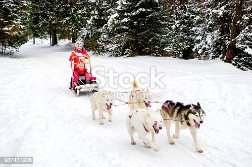 istock Girls Winter Husky Team 937431908