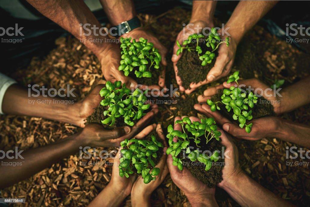 Groen een kans te geven - het zou kunnen alleen groeien op u foto