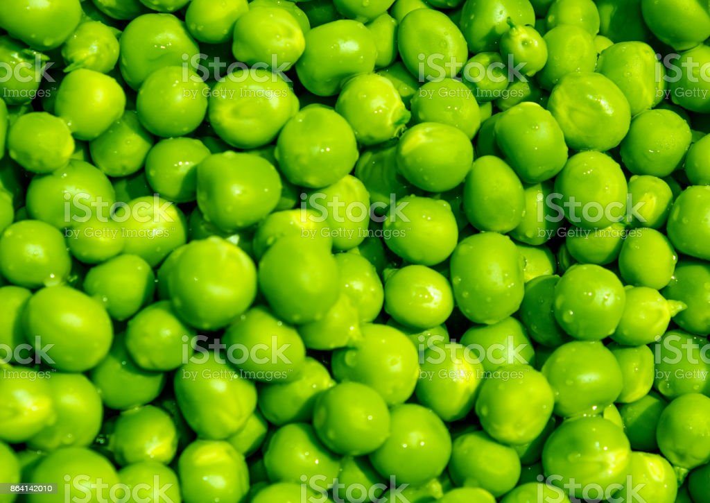 Give Peas A Chance royalty-free stock photo