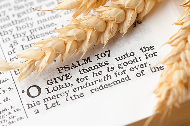 o ihnen dank psaltery 107 thanksgiving - psalm stock-fotos und bilder