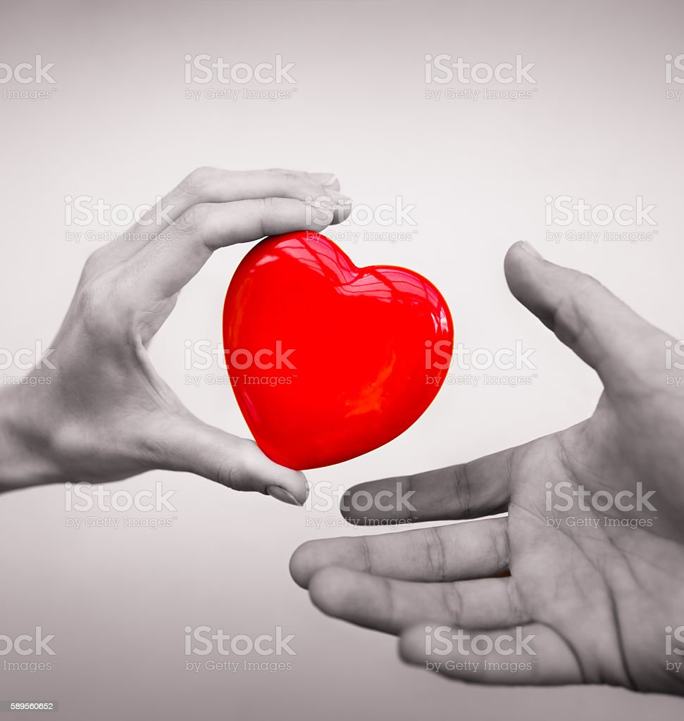 Giving a heart stock photo